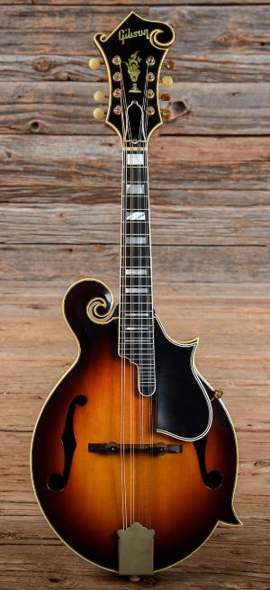 The Gibson F style mandolin