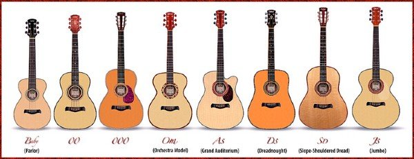 chart showing the various types of acoustic guitar body shapes